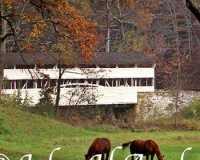 02-knox-bridge-w-horses